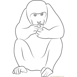 Jaipur Rajasthan India Monkey Free Coloring Page for Kids