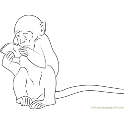 Monkey Eating Sweet Food Free Coloring Page for Kids