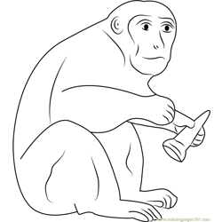 Monkey Having Ice Cream Free Coloring Page for Kids