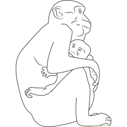 Monkey Hug His Son