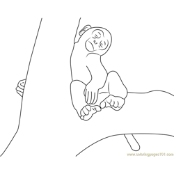 Monkey Sleeping On Tree Free Coloring Page for Kids