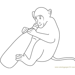 Monkey With Wine Bottle Free Coloring Page for Kids