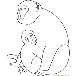 Monkey and Son Free Coloring Page for Kids