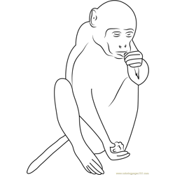 Mount Popa Monkey Free Coloring Page for Kids