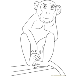 Nice Monkey Free Coloring Page for Kids