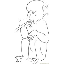 Smoking Monkey Free Coloring Page for Kids