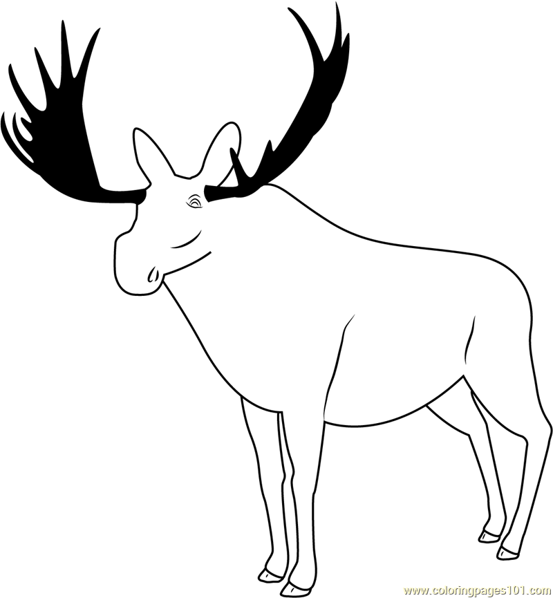 Poudre Canyon Moose Coloring Page