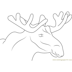 Moose Face Free Coloring Page for Kids