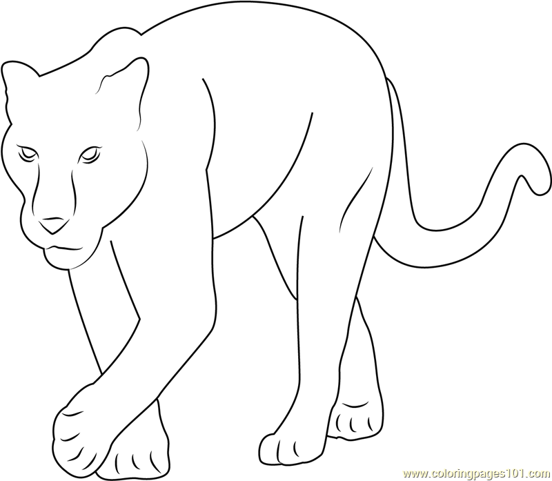 baby panther coloring page - Black Panther Coloring Pages