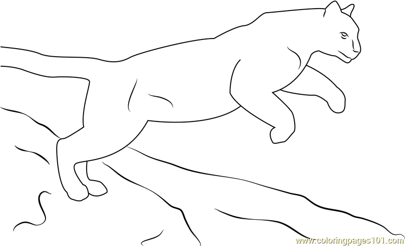 Jumping Panther Coloring Page