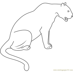 Panther Black Seet Free Coloring Page for Kids