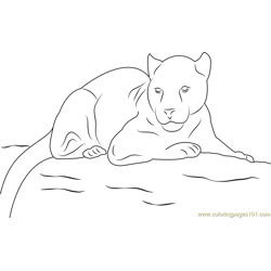 Panther Look Free Coloring Page for Kids