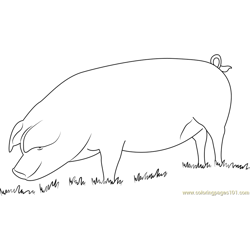 Home Pig Free Coloring Page for Kids