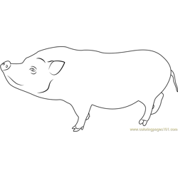 Peyton Pig Free Coloring Page for Kids