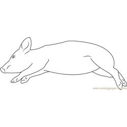 Sleeping Pig Thakudwara Free Coloring Page for Kids