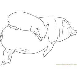 Sleeping Pigs by Shalotka Free Coloring Page for Kids