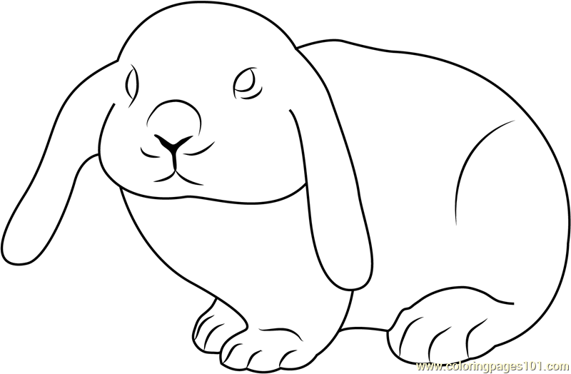 cute rabbit coloring page - Rabbit Coloring Pages