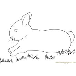 Charming Rabbits coloring page