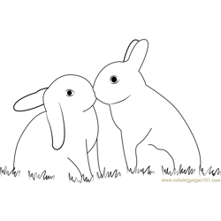 Rabbit In Love