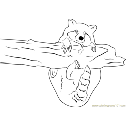 Raccoon Hug a Tree Free Coloring Page for Kids