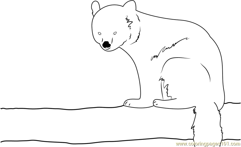 Red Panda Sitting Coloring Page
