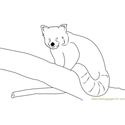 Red Panda By Neomys Free Coloring Page for Kids