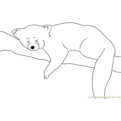 Red Panda Sleeping Free Coloring Page for Kids