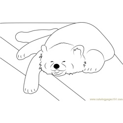 Red Panda is a Happy Napper Free Coloring Page for Kids
