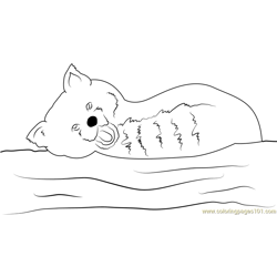 Smiling Red Panda coloring page