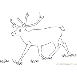 Reindeer Running Free Coloring Page for Kids