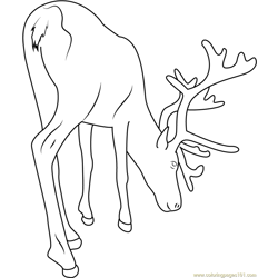 Reindeer See on Ground Free Coloring Page for Kids