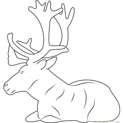 Reindeer Sitting Free Coloring Page for Kids