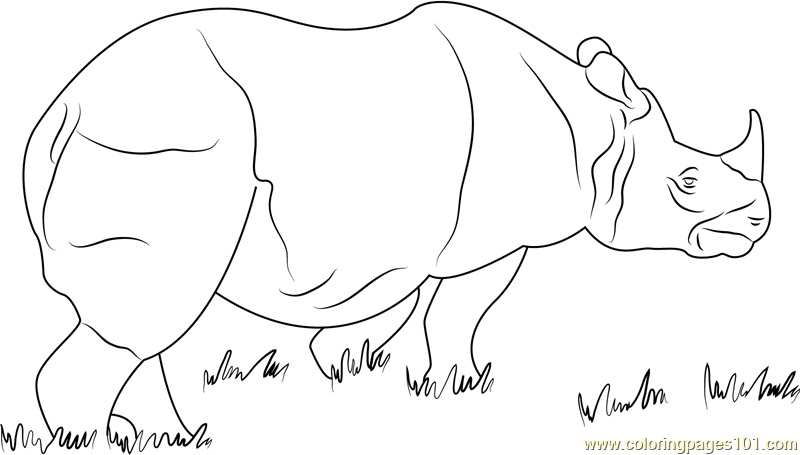 One Horned Rhino Coloring Page