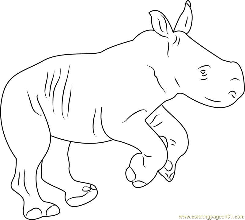Rhino Baby Coloring Page
