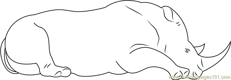 Rhino Sitting Down Coloring Page