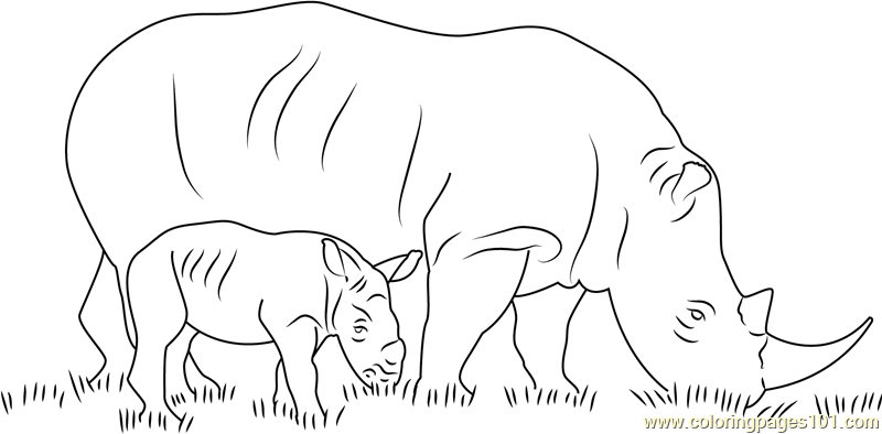 Rhino With Her Baby Coloring Page