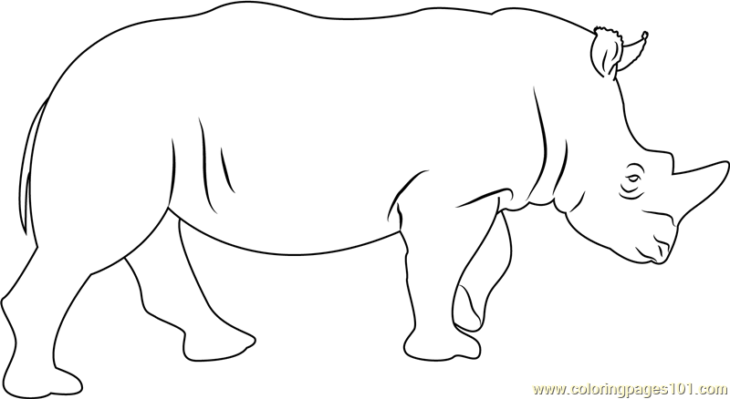 Rhino Coloring Page - Free Rhinoceros Coloring Pages ...