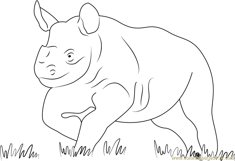 Running Baby Rhino Coloring Page