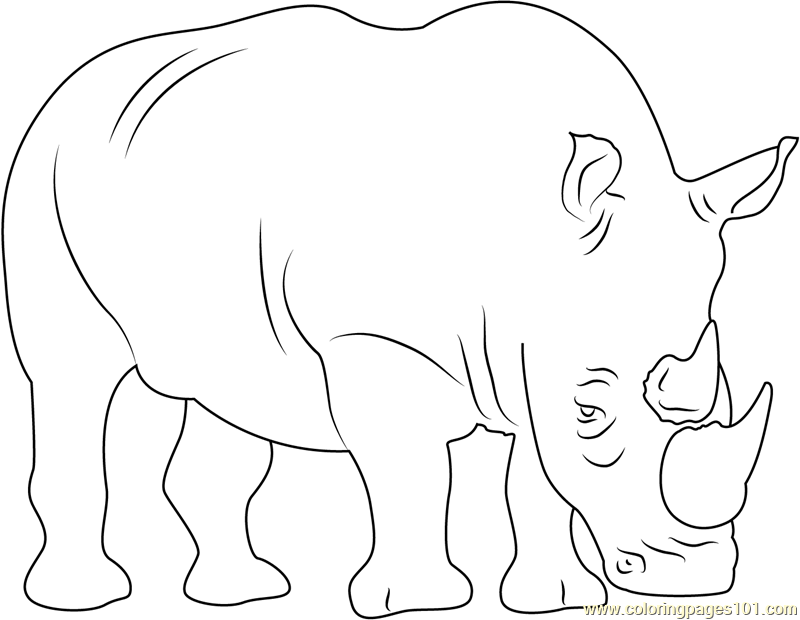 Two Horned Rhino Coloring Page