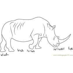 African Black Rhino Free Coloring Page for Kids