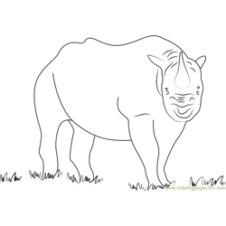 Black Rhino Shutter Free Coloring Page for Kids