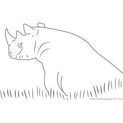 Black Rhino in Grass Free Coloring Page for Kids