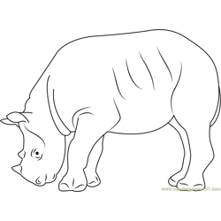 Black Rhino Free Coloring Page for Kids