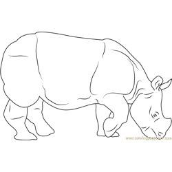 Indian Rhino Free Coloring Page for Kids