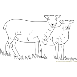 Sheep Cumbria Free Coloring Page for Kids
