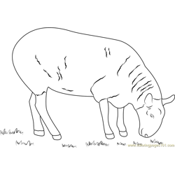 Sheep Eating Grass Free Coloring Page for Kids