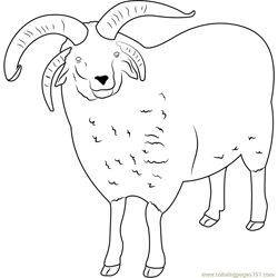 Sheep See Free Coloring Page for Kids