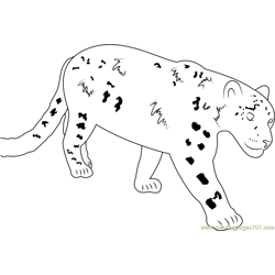 Beautiful Snow Leopard coloring page