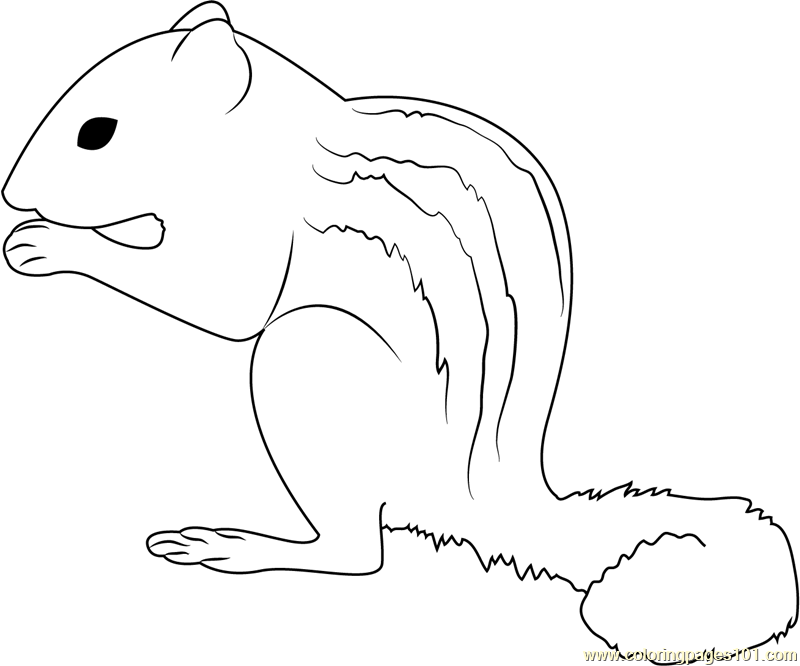 Sweet Little City Squirrel Coloring Page