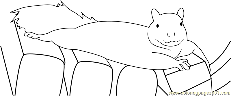 Wild Squirrels Lounge Coloring Page